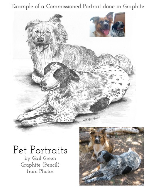 PetPortrait Information Graphite copy